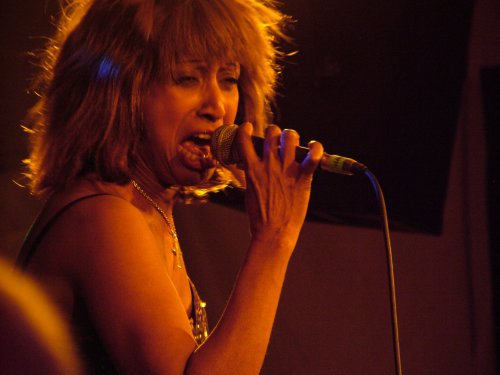 Tina Turner Tribute Act - Dolly James