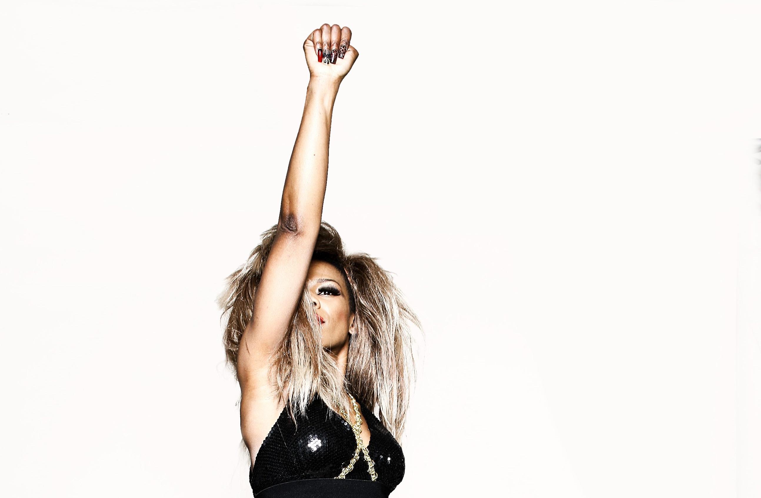 Tina Turner Tribute Act - Bupsi Brown